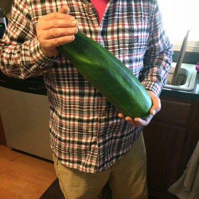 Our Zucchinis Are Awesome