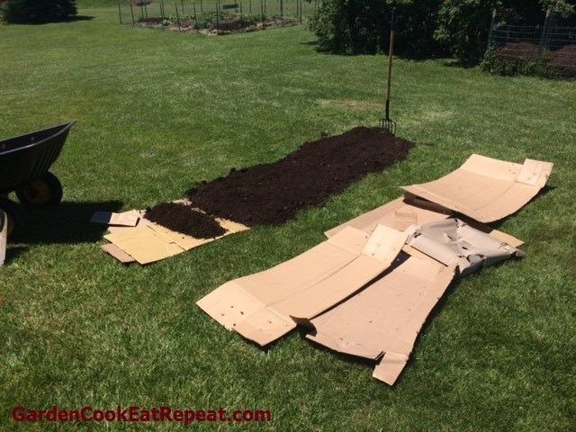 Lasagna Gardening Prep