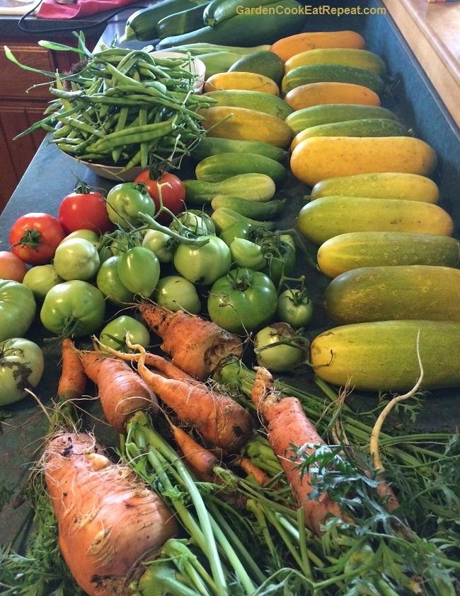 A lot of veggies