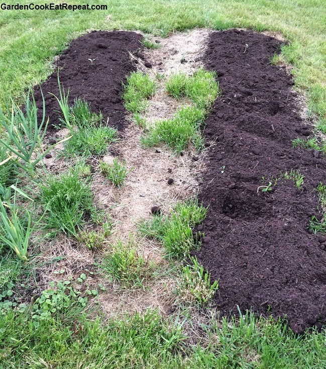 Planting squash and corn in side garden