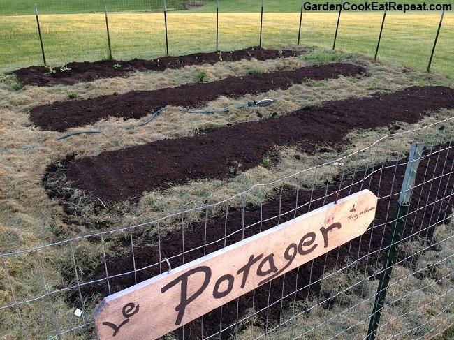 Lower garden freshly planted