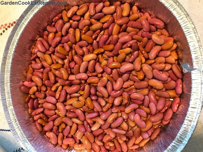 Homegrown Kidney Beans