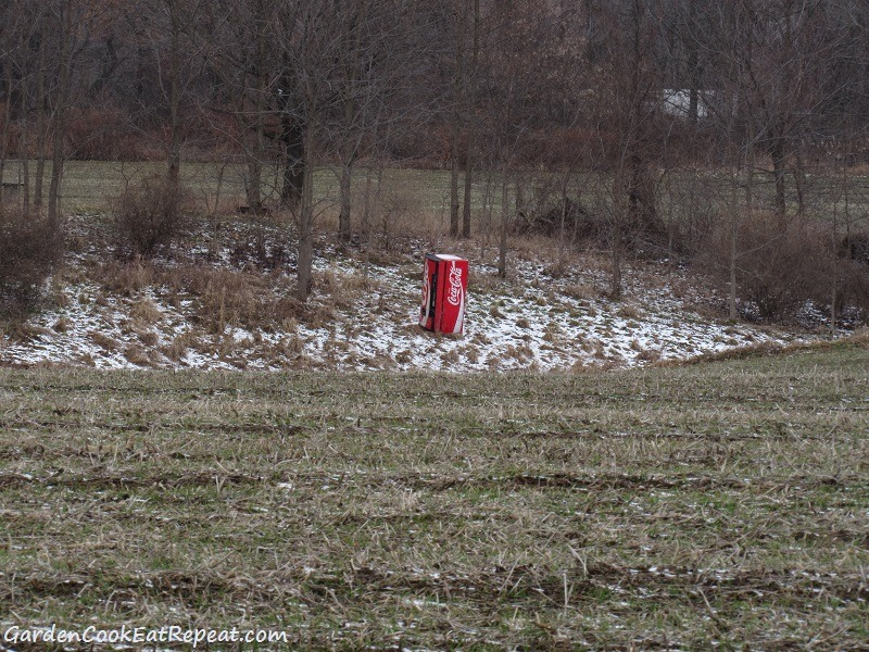 Coke machine in a corn field