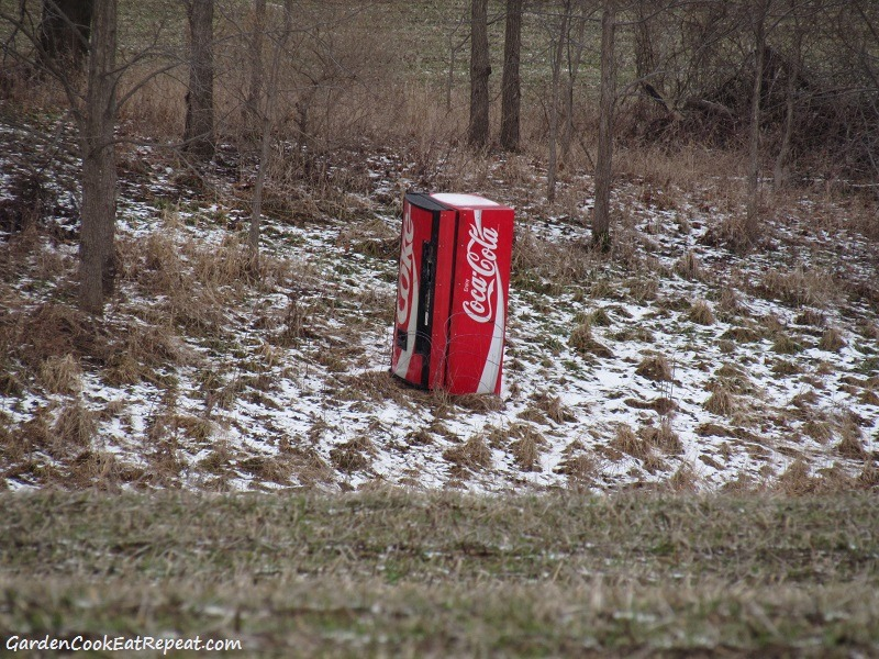 Coke machine in the middle of nowhere