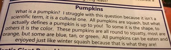Pumpkin Wisdom