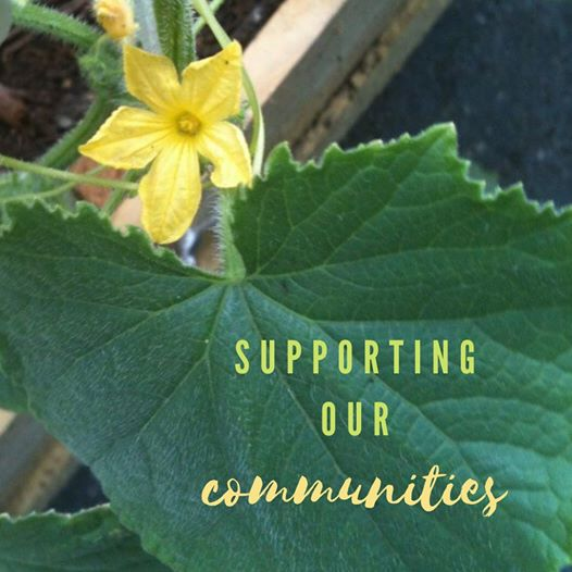 Support your community