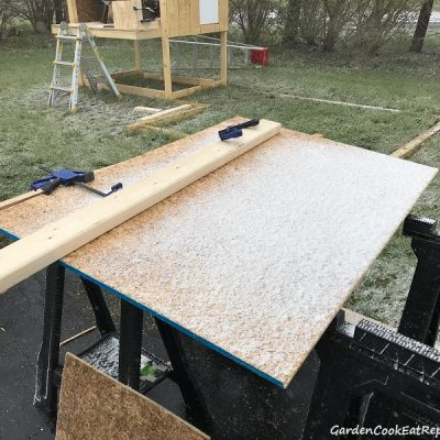 Update on Coop & It's Snowing in May!