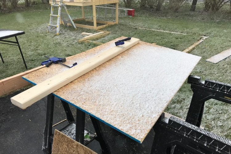 Snow during our coop work