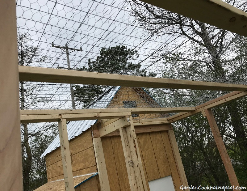 Chicken wire and welded wire on top of run