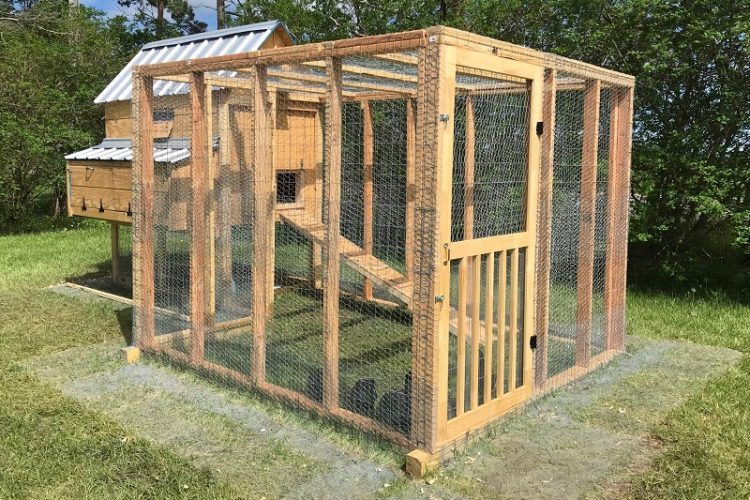 DIY Chicken Coop and Run