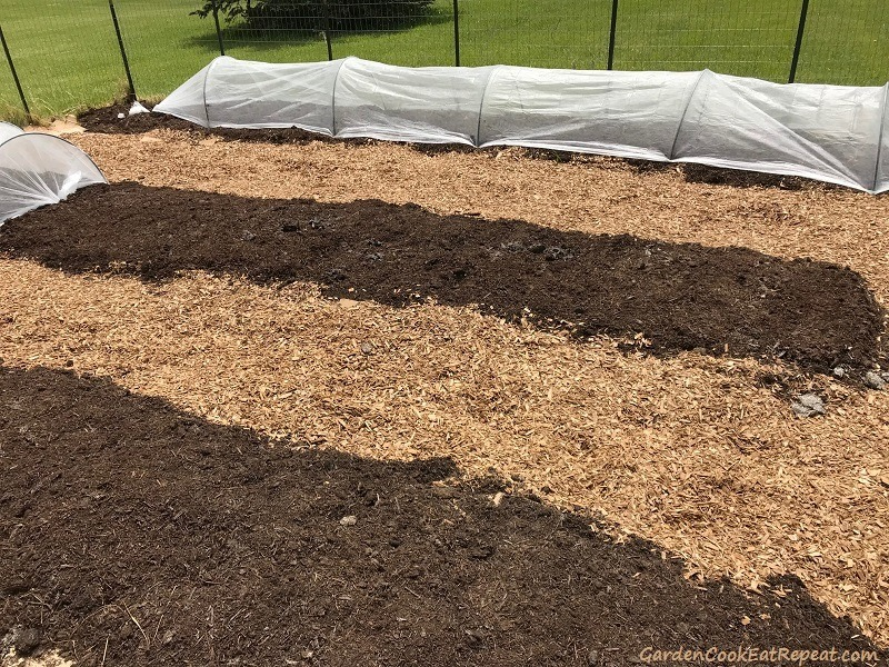 Row Covers Over Tomatoes