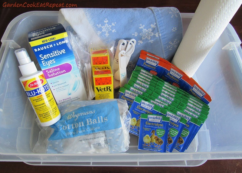 Starting a Chicken First Aid kit