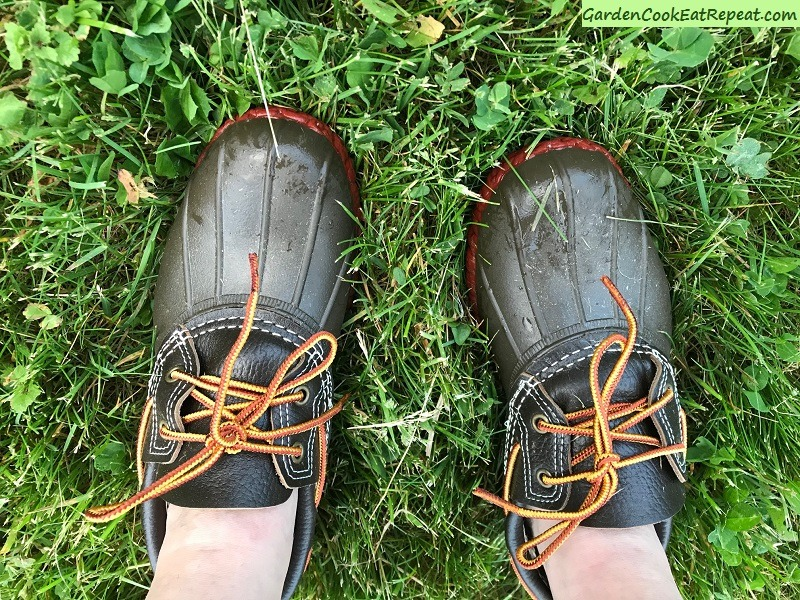 Chicken Run Shoes