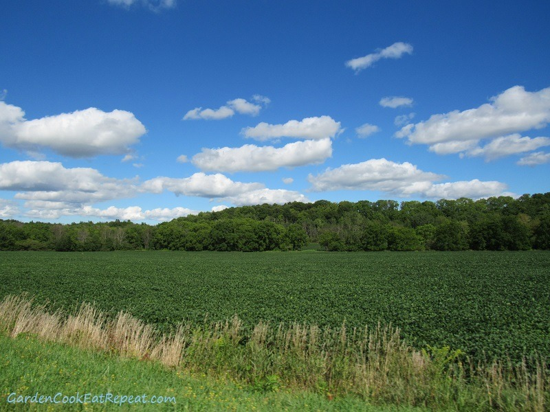 Farmer fields and blue skies