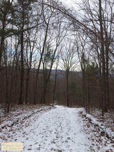 Path at High Tor